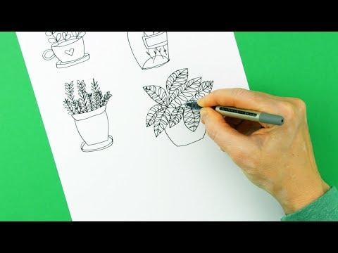 Pflanzen zeichnen ganz leicht - Teil 2