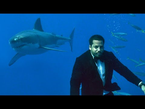 "Compilation of David Blaine doing impossible feats including spending 7 days underwater and standing on a 150 feet tower 22"" wide for 35hrs."