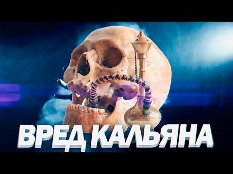 ВРЕД КАЛЬЯНА | Кальян и Сигареты Вред От Курения