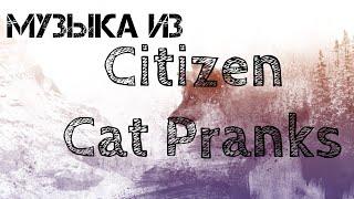 Эту Песню Ищут Всё Из Пранков [Citizen Cat Pranks]