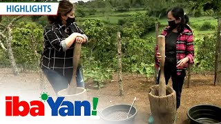 Gina shares her struggles as a coffee farmer | Iba 'Yan