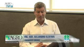 Alejandro Elzstain