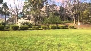 平和島公園 キャンプ場のイメージ