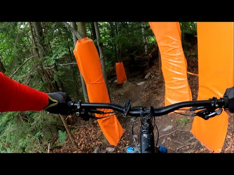 Bikepark Karlov 2020 DH