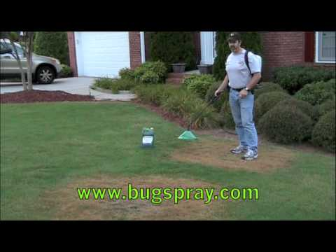 Video Green Lawn Fungus Damage Treatment
