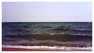 SPAM - Andreea (Lyric video)