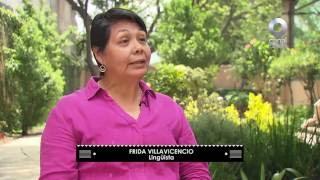 Entrevista - Frida Villavicencio