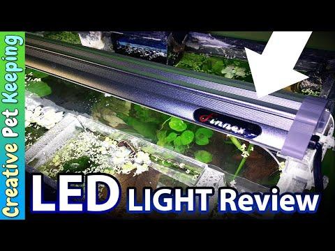I GOT A NEW AQUARIUM LIGH! | Finnex Ray 2 Daylight REVIEW