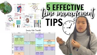 5 EFFECTIVE TIME MANAGEMENT TIPS | Studycollab: Alicia