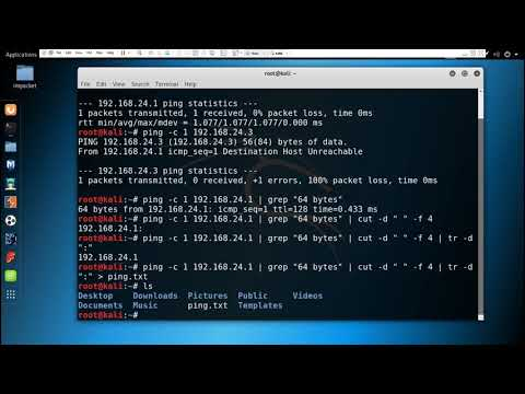 Writing Your First Script In Kali LInux | Ipsweeper