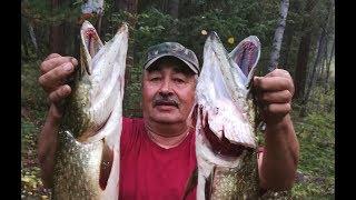 Лов щуки на водохранилище богучанской гэс