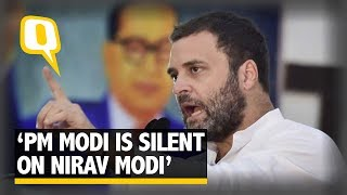 """Why Are PM Modi & FM Jaitley Silent on Nirav Modi?"" Asks Rahul Gandhi 
