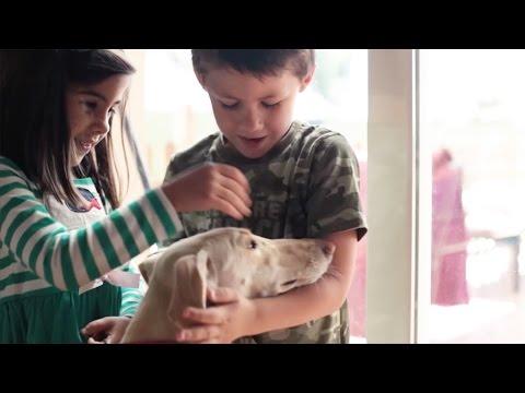 Imagen del vídeo 'El día que cambió nuestras vidas'