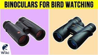 10 Best Binoculars For Bird Watching 2019
