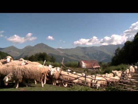 Trailer film Një rreze mbi Sharr