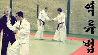 preview picture of video '[HKD intensives] Hankido flow techniques'