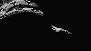 Mad Money & Alekna - Mi Casa Tu Casa (official video 2014)