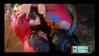 Catfight South Indian