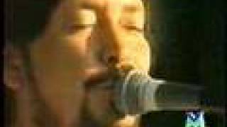 "Chris Rea ""Soup Of The Day"""