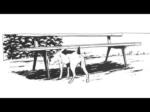 Vidéo de Christophe Chabouté