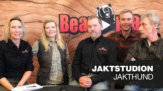 JAKTSTUDION | Jakthund