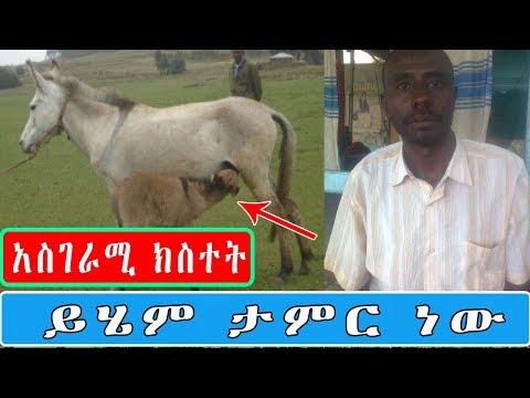 አስገራሚ ክስተት ይሄም ታምር ነው በአማራ ክልል ሰሜን ሸዋ ዞን (amazing news from amhara region )