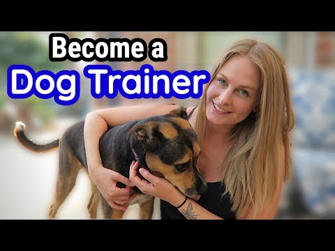 How to Become a Professional DOG TRAINER - YouTube