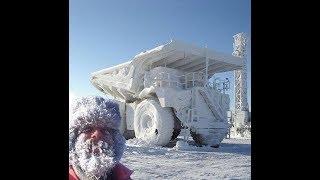 Прикольные картинки! Зима оказалась по-настоящему суровой.