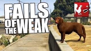 Clumsy Fails - Fails of the Weak #244