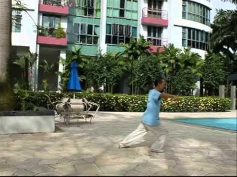 Video of TaiChi 24 Teaching 3(24式太极拳-3)