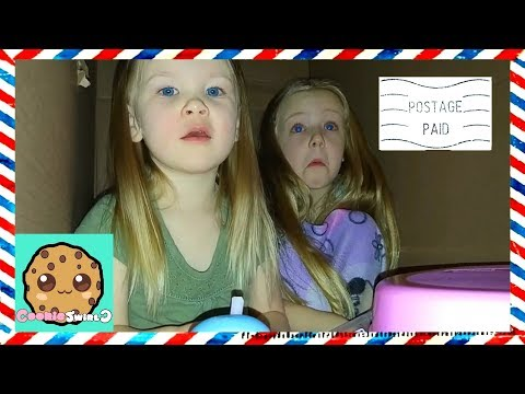 I Mailed Myself in a Box to Cookie Swirl C with Little Sister!!! Met Evan on Way to Ryan Toy Review