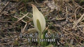 癒しの音風景動画・5.1chサラウンド早春、川の音・高山市・郡上市・自然音・ナチュラルサウンド