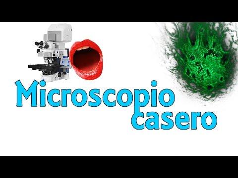 ¿Qué hay en tu boca? – Microscopio láser casero (Experimentos Caseros)