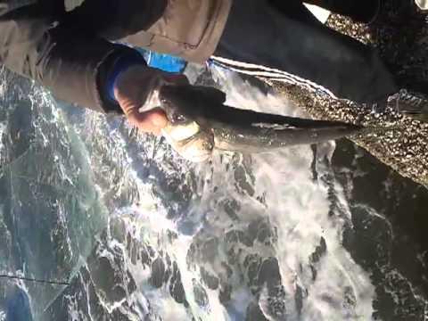 Negozio di macchine fotografiche subacquee per pesca invernale