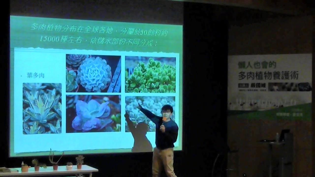 信義學堂:懶人也會的多肉植物養護術