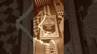 تحميل اغاني من قصص السيرة ☺ صدمني موقف المرأة ???? واذهلني رد عمر بن الخطاب رضي الله عنه ???? MP3