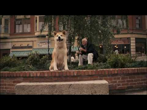Hachiko: one story of the dog....