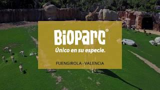 Campaña Bioparc 1