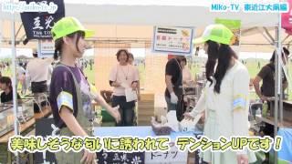 映像で湖国の魅力伝え隊Miko-TV 東近江大凧まつり編 Part1