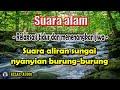Suara alam ! Suara sungai dan nyanyian burung-burung - Relax Audio