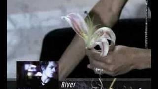 Marque - River