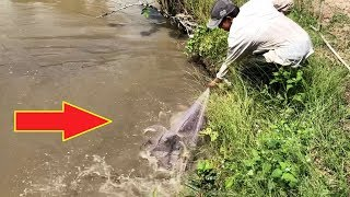Unbelievable Cast Net Fishing River Monsters GIANT Rohu