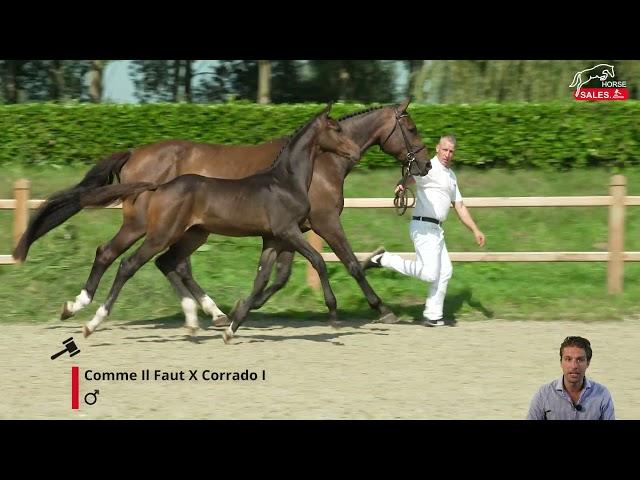 Com Corrado AL Z