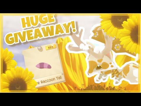 RARE Raccoon Tail GIveaway || AJPW - смотреть онлайн на Hah Life