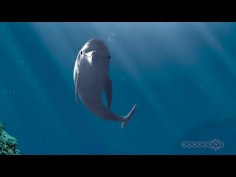 ecco the dolphin xbox 360 walkthrough