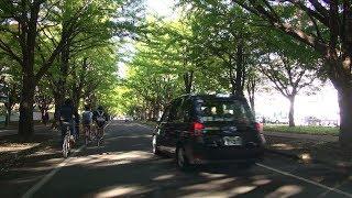 札幌のタクシーはすぐ鳴らす[札幌市]