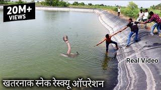 खतरनाक स्नेक रेस्क्यू ऑपरेशन, खेत तालाब में गिरे 2 जहरीले सापों को बाहर निकाला, देखिये पूरा वीडिय�
