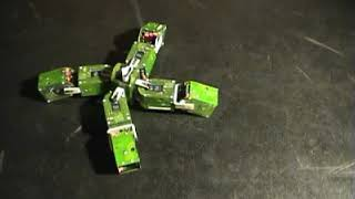 YaMoR modular robot, learning to locomote.