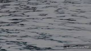 [FMV] Jinkook   Tortured Soul (Chord Overstreet)