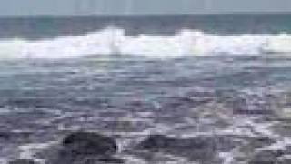 preview picture of video 'Crystal Cove Pacific Ocean California'